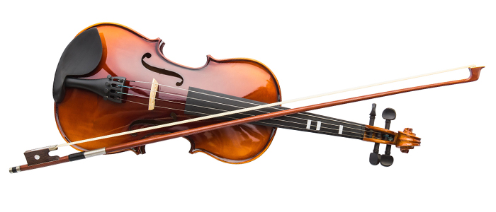 Picture of a typical violin